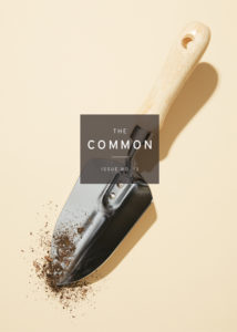 cover of The Common Issue 13, showing a garden trowel