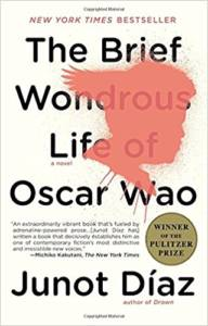 The cover of The Brief Wondrous Life of Oscar Wao: black text on a white background and a reddish-pink silhouette of a boy's profile