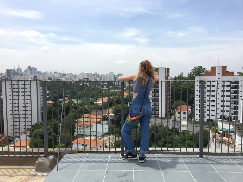 São Paulo from above.