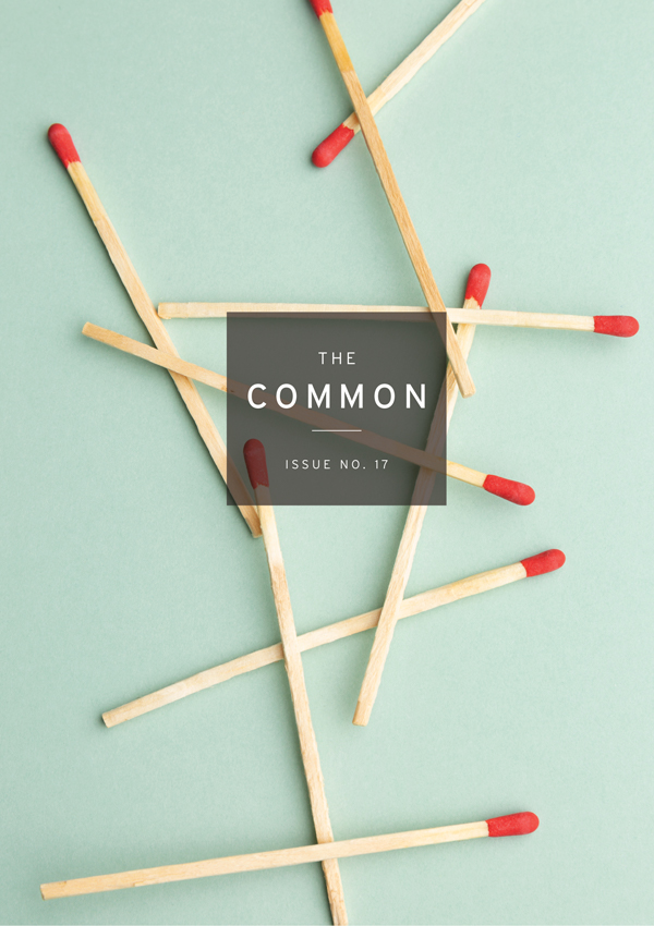 Common Issue 17 cover with matches strewn on a pale green background