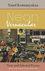 Cover of Neon Vernacular