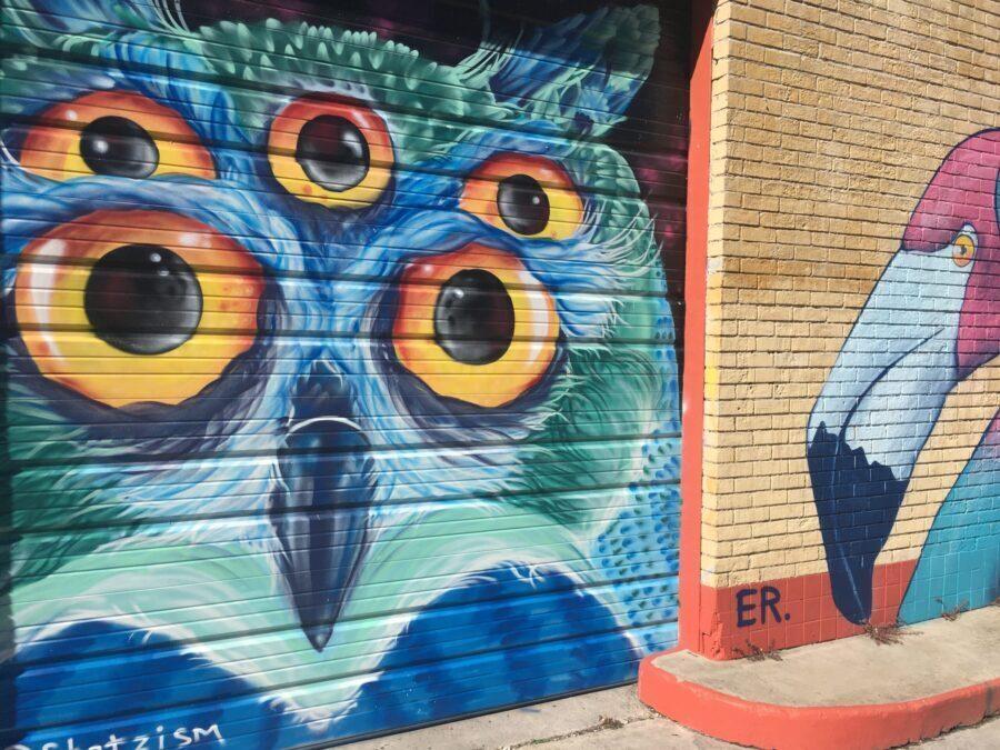 street art of an owl